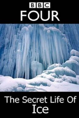 Постер фильма Тайная жизнь льда (2011)