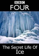 Тайная жизнь льда (2011)