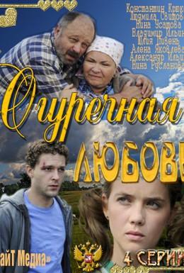 Постер фильма Огуречная любовь (2011)