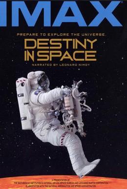 Постер фильма Судьба в пространстве (1994)