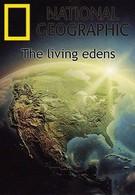 Первозданная природа. Эдем жизни (1998)