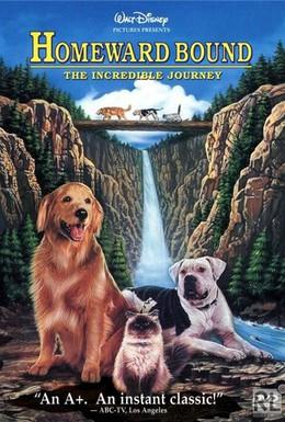 Постер фильма Невероятное путешествие (1963)