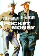 Карманные деньги (1972)