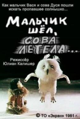Постер фильма Мальчик шёл, сова летела (1981)