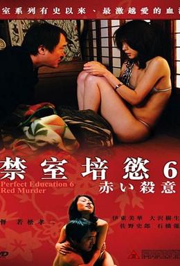 Постер фильма Идеальное образование 6 (2004)