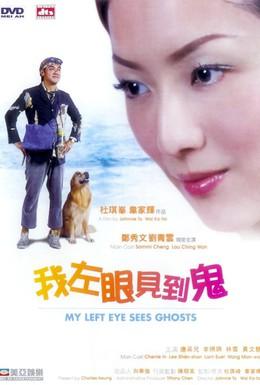 Постер фильма Мой левый глаз видит привидения (2002)