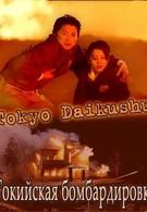 Токийская бомбардировка (2008)