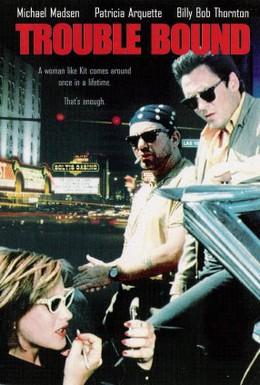 Постер фильма Впереди одни неприятнoсти (1993)