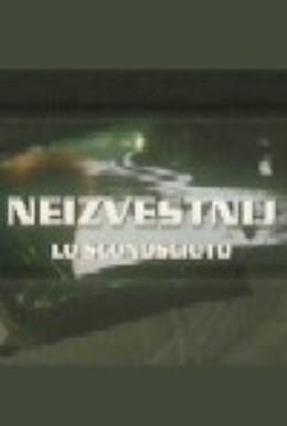 Постер фильма Неизвестный (1993)