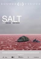 Соль (2009)