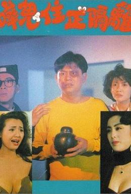 Постер фильма Меридиан (1990)