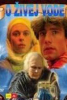 Постер фильма Живая вода (1988)