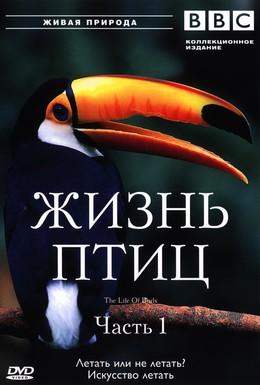 Постер фильма BBC: Жизнь птиц (1998)