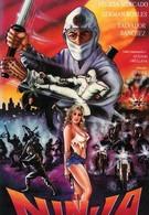 Мексиканский ниндзя (1991)