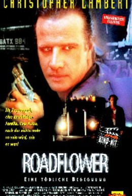 Постер фильма Цветок у дороги (1994)