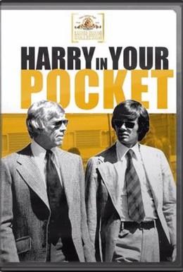 Постер фильма Гарри-карманник (1973)