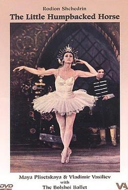 Постер фильма Сказка о Коньке-Горбунке (1962)