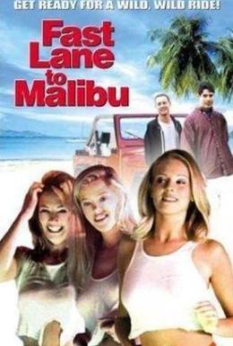 Постер фильма С ветерком в Малибу (2000)