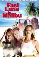 С ветерком в Малибу (2000)