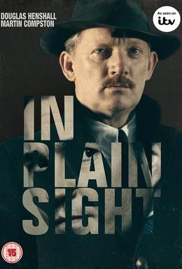 Постер фильма На виду (2016)