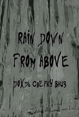 Постер фильма Дождь сверху вниз (2008)