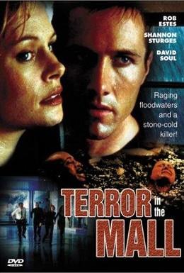 Постер фильма Темный дождь (1998)