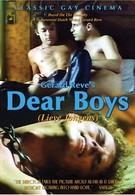 Дорогие мальчики (1980)