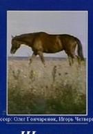 Шельма (1996)