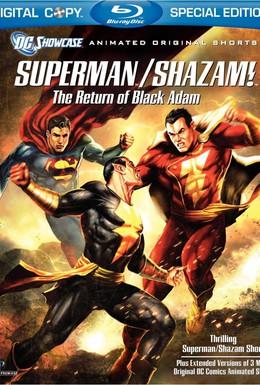 Постер фильма Витрина DC: Супермен/Шазам! - Возвращение черного Адама (2010)