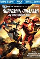 Витрина DC: Супермен/Шазам! – Возвращение черного Адама (2010)