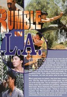 Разборка в Лос-Анджелесе (1996)