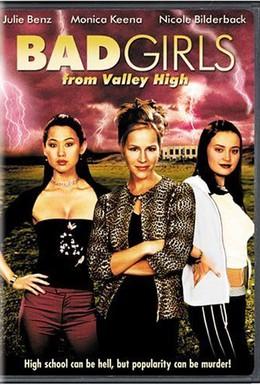 Постер фильма Плохие девчонки из высокой долины (2005)