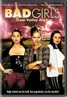 Плохие девчонки из высокой долины (2005)