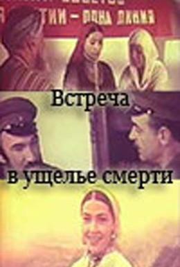 Постер фильма Встреча в ущелье смерти (1980)