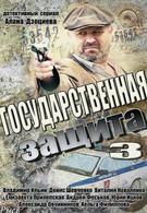 Государственная защита 3 (2013)
