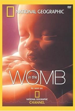 Постер фильма National Geographic. Жизнь до рождения: В утробе матери (2005)