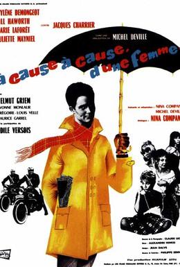 Постер фильма Из-за, из-за женщины (1963)