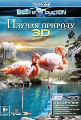 Постер фильма Изучая природу 3D (2013)