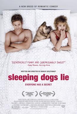 Постер фильма Спящие собаки могут врать (2006)