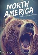 Северная Америка (2013)