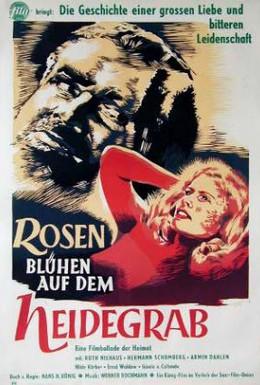 Постер фильма Розы цветут на могиле (1952)