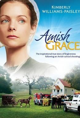 Постер фильма Прощение Амишей (2010)