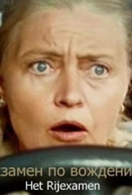 Постер фильма Экзамен по вождению (2005)