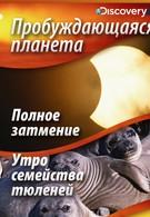 Пробуждающаяся планета (2006)