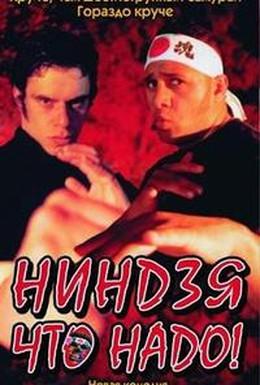 Постер фильма Ниндзя что надо! (2002)