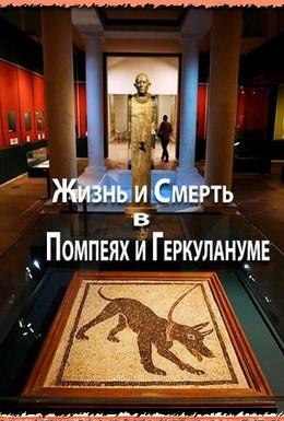 Постер фильма Жизнь и смерть в Помпеях и Геркулануме (2013)
