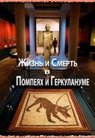 Жизнь и смерть в Помпеях и Геркулануме (2013)