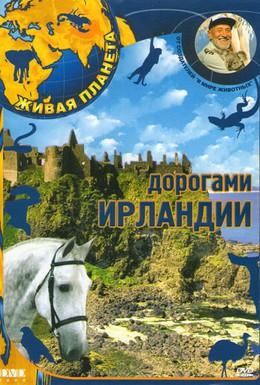 Постер фильма Живая планета (2007)