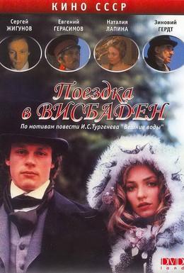 Постер фильма Поездка в Висбаден (1989)