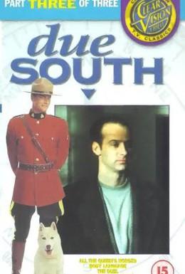 Постер фильма Строго на юг (1994)